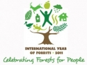 UN Logo Representing International Year of Forests