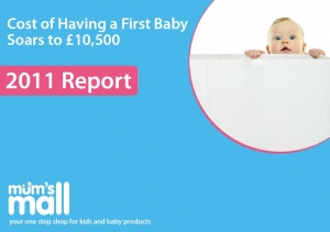 Cost of Having a First Baby in 2011 over �10,500 report cover