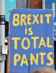 Brexit is Total Pants banner at Manchester march