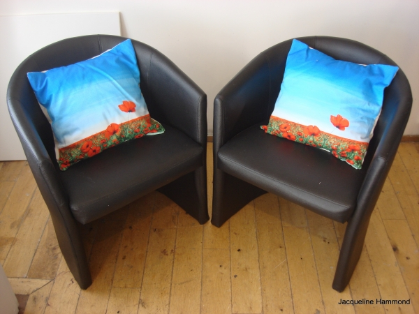 Blowing Poppies cushions on leather chairs