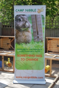 Rabbits are the most cruelly treated pet in the UK - Something has to change.